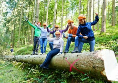 A group of people sitting and standing on a tree, celebrating the resonance culture at the sustainable hotel SCHWARZWALD PANORAMA