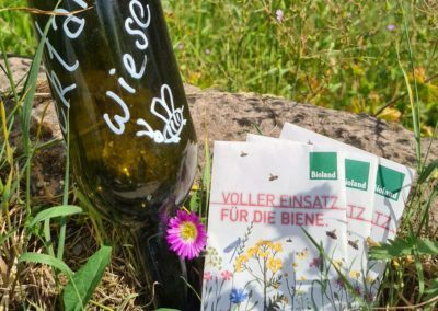 A broschure about our engagement for bees, as a part of the resonance culture at the sustainable hotel SCHWARZWALD PANORAMA